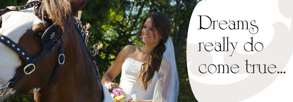 fraser-valley-dream-wedding-carriage