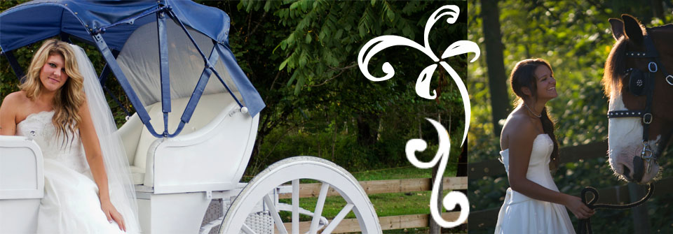 Fairytale-Horse-and-Carriage-Wedding